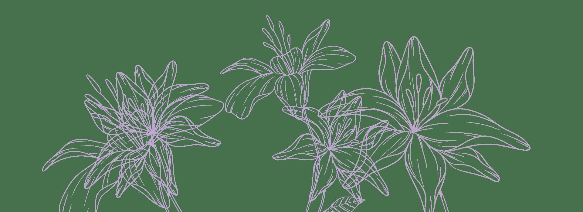residence valeria fiori lilla sfondo